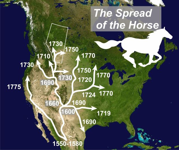 Figure 2. Spread of the horse