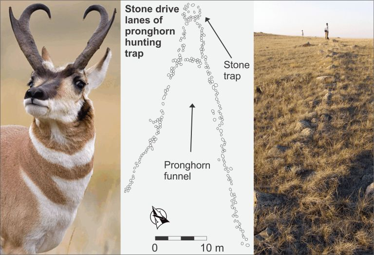 Ancient pronghorn hunting trap. The map is of stone drive lanes in Southeast Alberta and the photograph at right is of archaeologists mapping a pronghorn drive lane north of the Red Deer River.