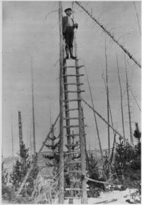 A photograph of a person atop a simple lookout in 1912.