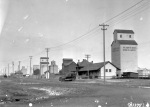 Elevator row at Vegreville in 1926 illustrates the variety of heights and shapes that defined Alberta's skyline. (Provincial Archives of Alberta, B.2749.)