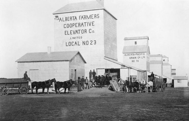 Barons, 1913. (Glenbow Archives, NA-2059-27)