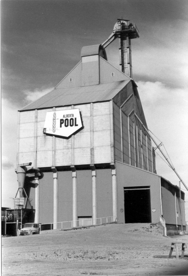Buffalo Elevator at Lyalta in 1997. (Courtesy Alberta Heritage Survey, 97-R0248-17.)