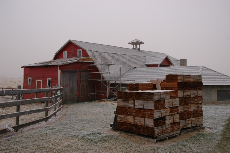 A historic barn in east-central Alberta being re-shingled (2005).