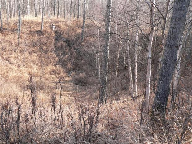 Looking down into the Whitecourt / Woodlands Meteorite Impact Crater (2007)
