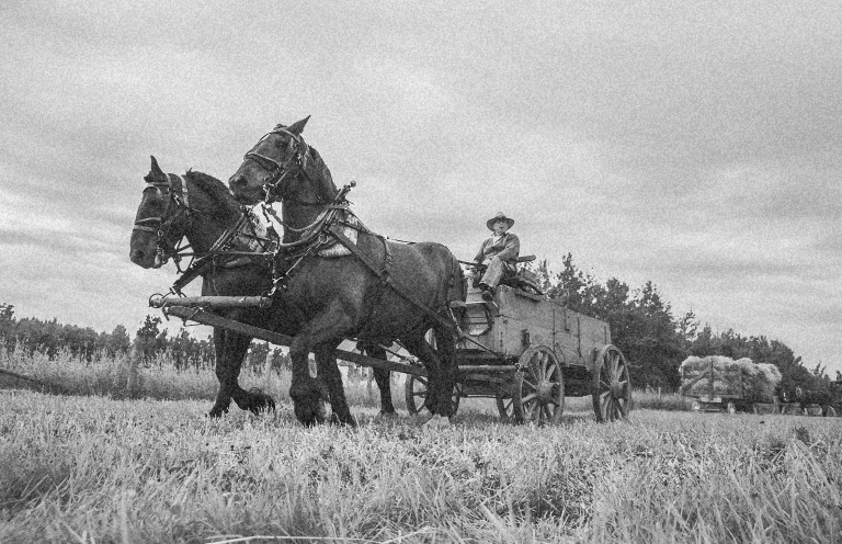 At the Ukrainian Cultural Heritage Village where it is said an apparition of a wagon master with a silent team of horses roams the site. (Photo Credit: Travel Alberta (colour altered))