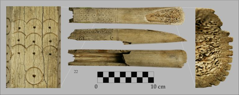 Figure 5. Bone flesher
