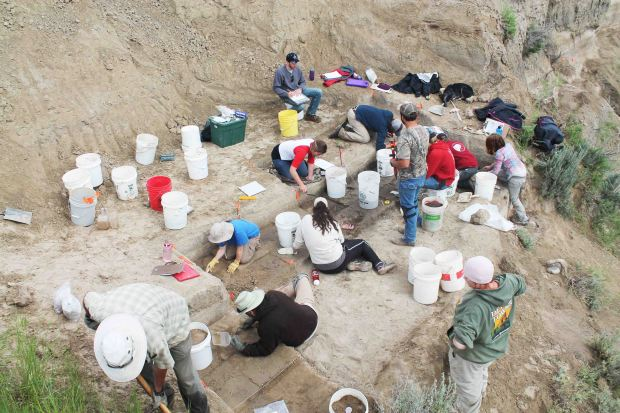 Excavations at the La Prele Mammoth site, Converse County, Wyoming (Photo: Todd Surovell)