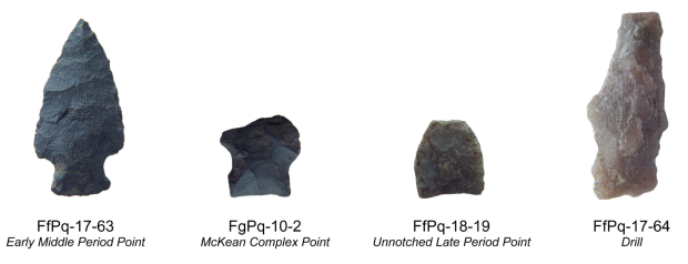 Lithic artifacts recovered during archaeological survey at Buck Lake in 2008.