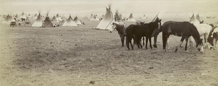 "The Miriam and Ira D. Wallach Division of Art, Prints and Photographs: Photography Collection, The New York Public Library. ""Indian camp, Blackfoot Reserve, Alberta."" New York Public Library Digital Collections. Accessed March 10, 2016. http://digitalcollections.nypl.org/items/510d47dc-4568-a3d9-e040-e00a18064a99"