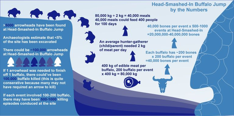 Figure 4. Like math? Like animal bones? This infographic about Head-Smashed-In Buffalo Jump is right up your alley (if you answered yes to the previous two questions). Courtesy of Todd Kristensen and Mike Donnelly based on an interview with Royal Alberta Museum archaeologist Bob Dawe.