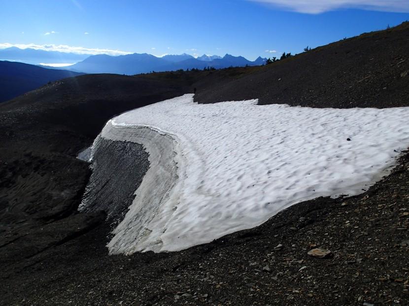 Rocky Mountain Alpine Project: Jasper National Park2016