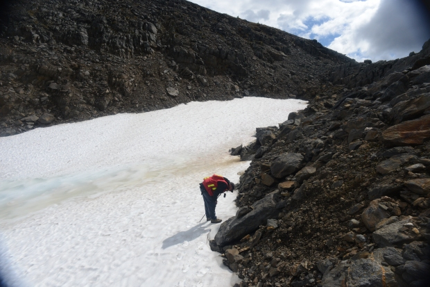 Archaeologist Aaron Osicki surveying an ice patch in the Tonquin Valley.