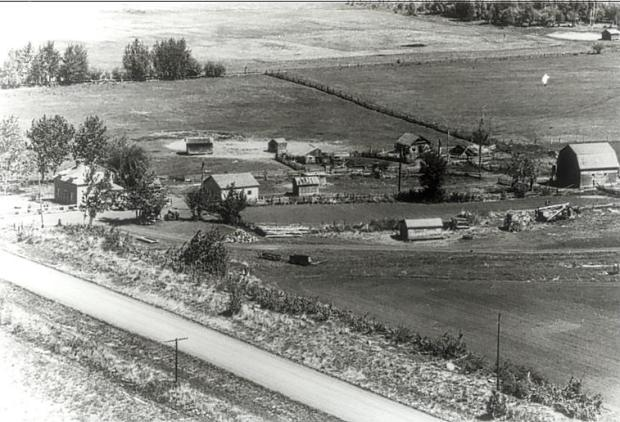 Historic aerial view of Bowen Farm at Amber Valley with Obadiah Place at far left. Source Unknown, Courtesy of the Historic Resources Management Branch, Alberta Culture and Tourism.