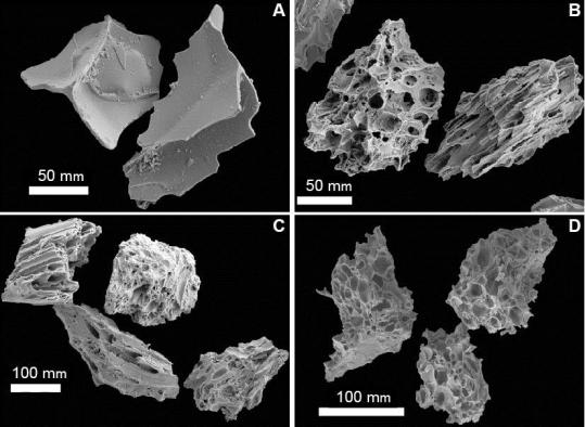 Volcanic ash is mostly made up of tiny pieces of glass. Much of the glass are tiny pieces of pumice, but sometimes they can look 'platey', forming shapes like in we see in A. These are scanning electron microscope images of the glass shards that make up Mazama (A,B); Bridge River (C); and Mount St. Helens Yn (D). Only Mazama has these 'platey' glass shards. Figure from Jensen and Beaudoin 2016.