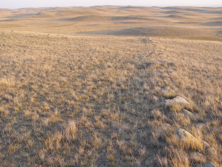 One of the drive lines at the Barnett Antelope Drive. Photo courtesy of the Royal Alberta Museum.