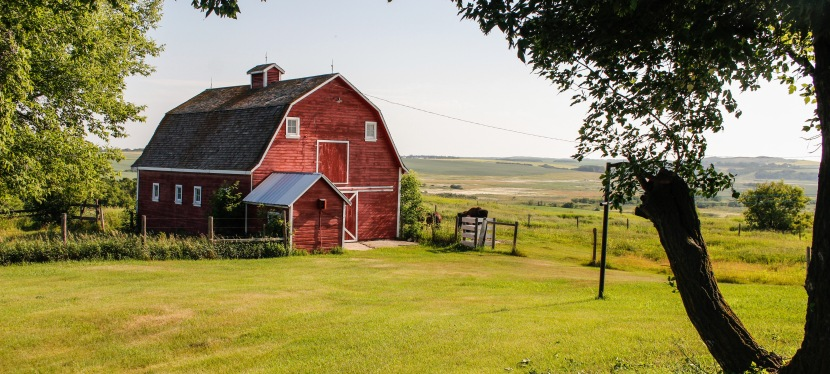 Preserving Heritage for Future Generations: Heritage Barns of Flagstaff County
