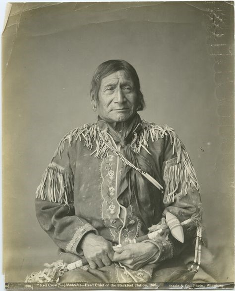 Chief Red Crow