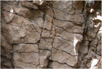In-place, vertically-expressed Beaver River Silicified Sandstone elsewhere in the region.