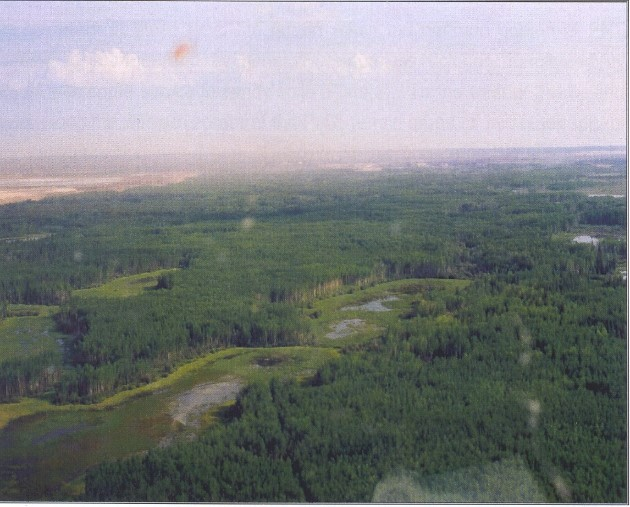 View northwest over the core of the Quarry of the Ancestors designation area showing typical sinuous ridges with aspen forest cover as well as muskeg and water-filled former channels.