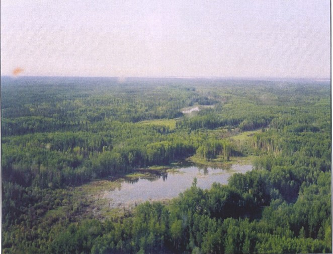 View southeast along the eastern margin of the Quarry of the Ancestors designation area showing a complex landscape characterized by knolls interspersed with low-lying muskeg and water-filled lowlands.
