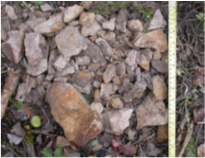 Quarry-related archaeological specimens as recovered in a single shovel test at the Quarry of the Ancestors.