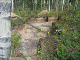 Completed excavations at one of the affiliated sites within the Quarry of the Ancestors designation area.