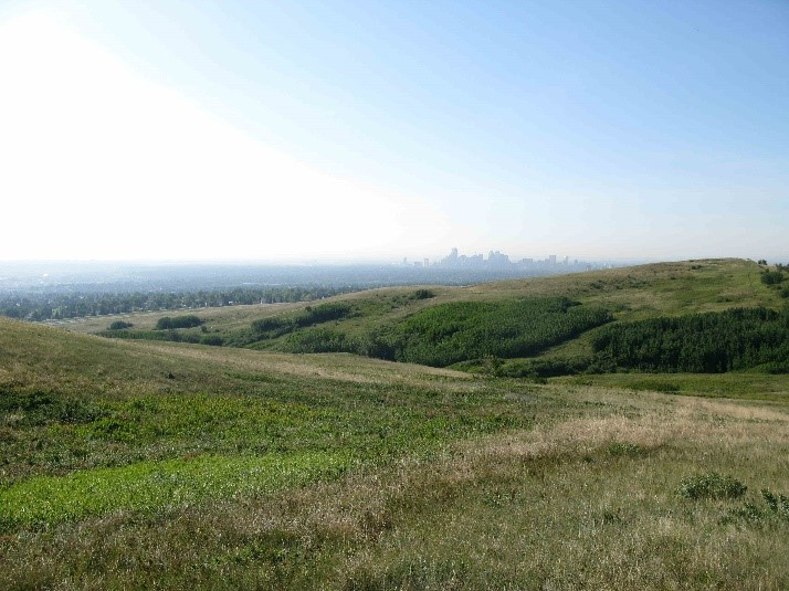 Nose Hill Archaeological Resource, Calgary. Many archaeological resources across the hill are well documented, but other portions of the hill remain unexplored and undoubtedly have the potential to reveal much about the pre-contact use of the hill over the past 9,000 years.